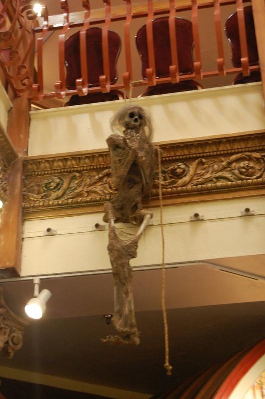 Bucky Skeleton (Fred)